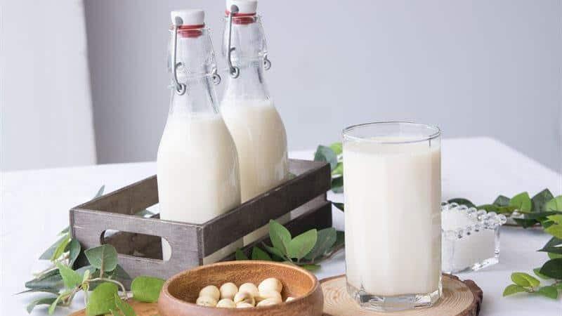 Máy làm sữa hạt Medion MD 19725