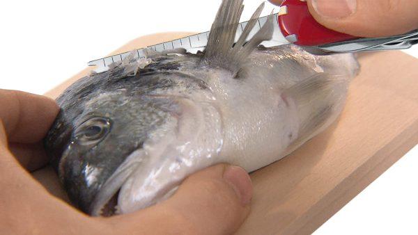 Dụng Cụ Đa Năng Victorinox Fisherman 1.4733.72-6
