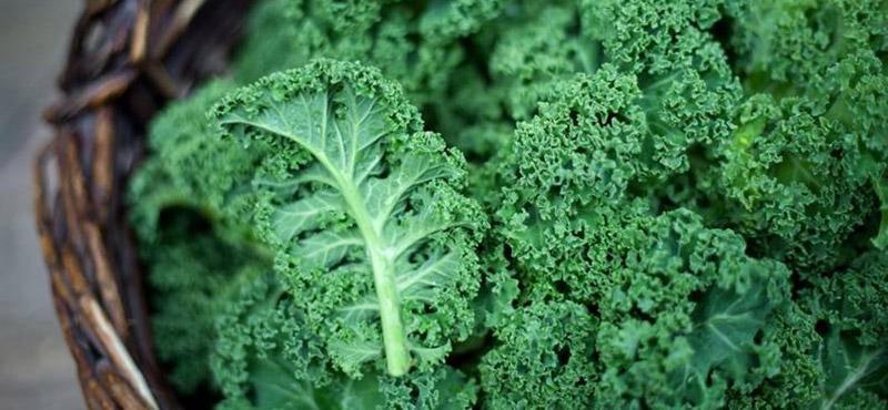 Viên Nang Nature Love Vitamin C Aus Bio Acerola 180 Viên-16