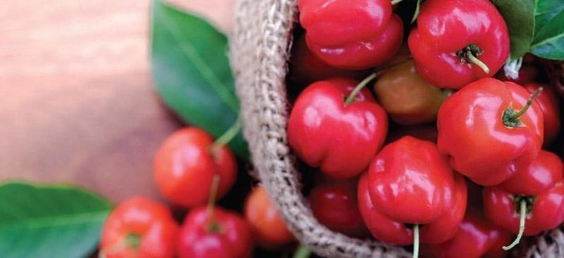Viên Nang Nature Love Vitamin C Aus Bio Acerola 180 Viên-6